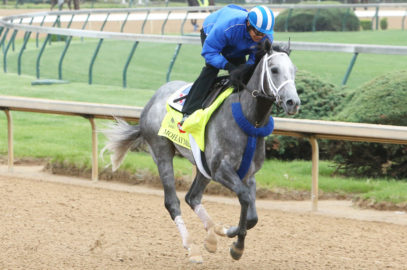 Mohaymen, Frosted, Kareena Breeze at Saratoga