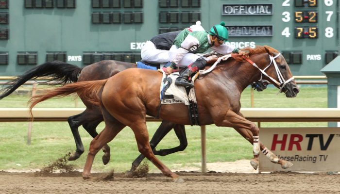 Filly Wins at Ellis One Year After Mom's Victory